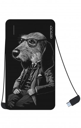 Power Bank 5000mAh Type-C+Android - Cane elegante